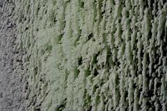 Paraffin-Leinwand-ca.155x155cmDetails2016